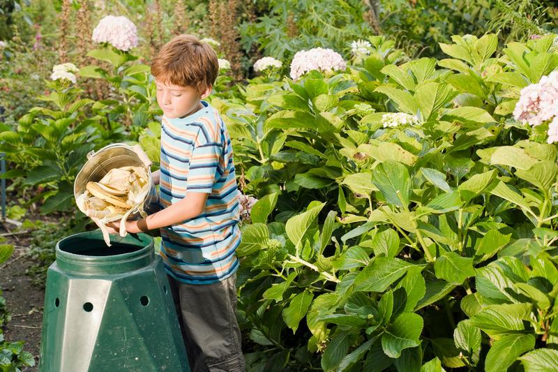 Boy emptying bucket into compost bin
