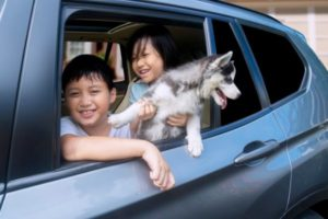 kids and puppy in car