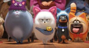 secret-life-of-pets-movie-review-kevin-heart-tiffany-haddish-harrison-ford-film