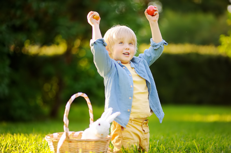 Charming little boy hunting for easter egg in spring park on Easter day. Cute little child with traditional bunny celebrating feast outdoors