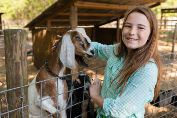 Girl and goat on farm