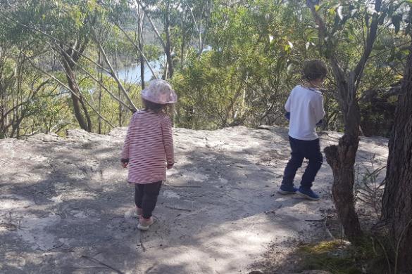 Bonnet Bay bush walk with kids