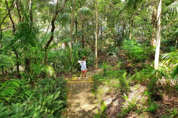 Joseph Banks Native Plants Reserve - Kareela