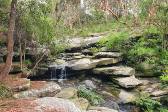 Savilles Creek Waterfall